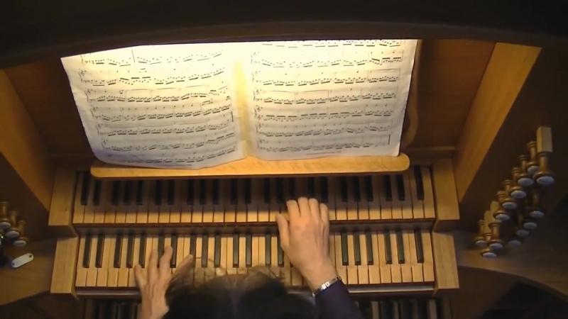 711 - J. S. Bach - Chorale prelude Allein Gott in der Höh sei Ehr (bicinium; Kirnb. coll. No. 22) BWV 711 - Massimo Pinarello