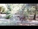 Дариша в Александровском парке катается на коне. Новочеркасск. Отпуск 2018 год.