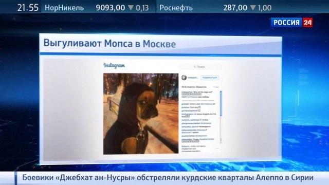Новости на «Россия 24» • Линдси Лохан крутит роман с сыном российского олигарха