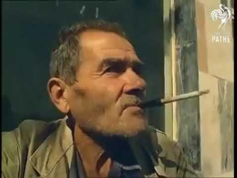 1967 Yılı İstanbul Ekmek Arası Lüfer