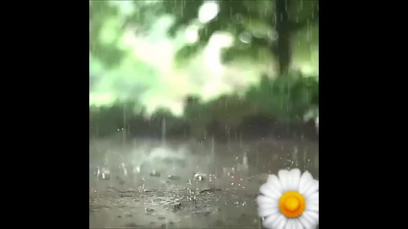 Sinem-yaz yağmuru whatsapp statusu.mp4