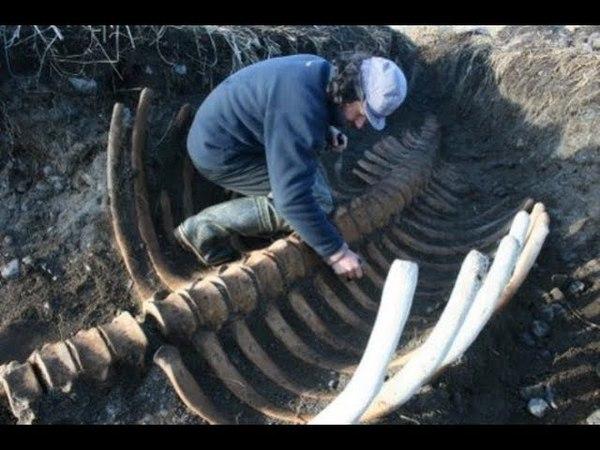 Рыбаки в ступоре.Это скелет самого дьявола.Таинственные цивилизации прошлого.Документальный
