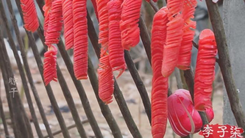 Ли ЦзыЦи ДЕВУШКА С ХАРАКТЕРОМ В ожидании весенних цветов Дай ЧуньНуань Хуа Кай Вяленые овощи ШайГань дэ ШуЦай с подк
