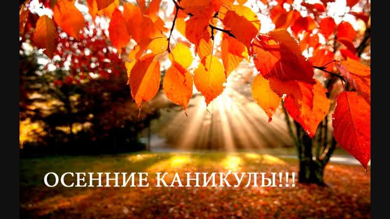 Влогер Владислав Осенние каникулы