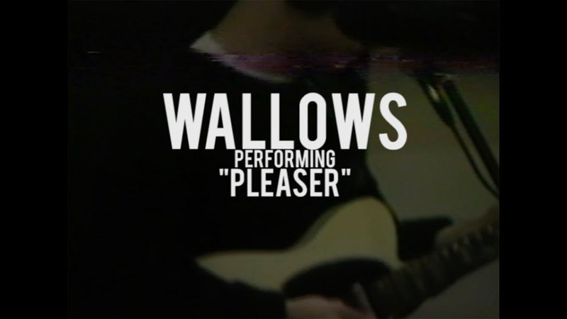 Wallows - Pleaser - Live at North Dwarf Records