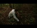 3. Выжить любой ценой - Коста-Рика дождевой лес