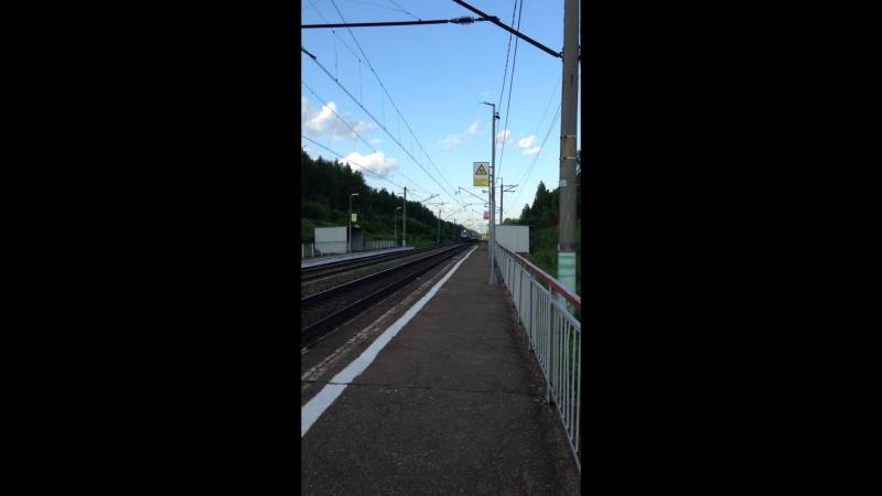 пассажирский поезд Неман Москва-Гродно у пл. 147 км