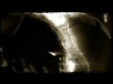 Velvet Acid Christ - Grey