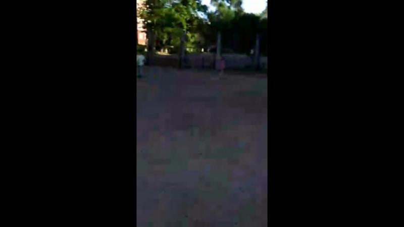 Video 1d4cd6b50b6a8ef241cedccd6bcb2969