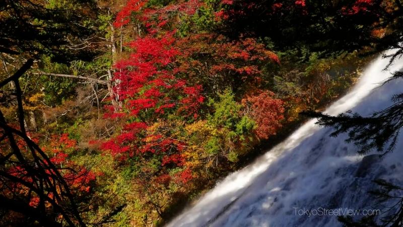 Япония Autumn colors around Nikko - Tochigi -日光の紅葉