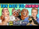 TRY NOT TO AWWW CHALLENGE w/ REAL PUPPIES!! ft. FBE Staff