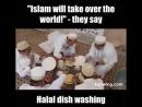 Всё по сунне аллахнутые лизуны только вылизывают чужие тарелки а не пальцы после еды