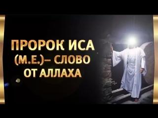 История о Пророке Исе (мир ему) (Иисус)