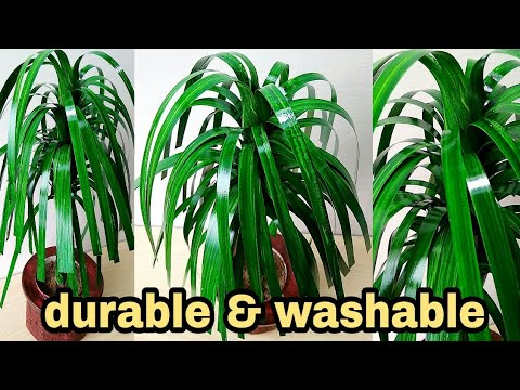 How to make artificial beautiful leaf plant for home decoration