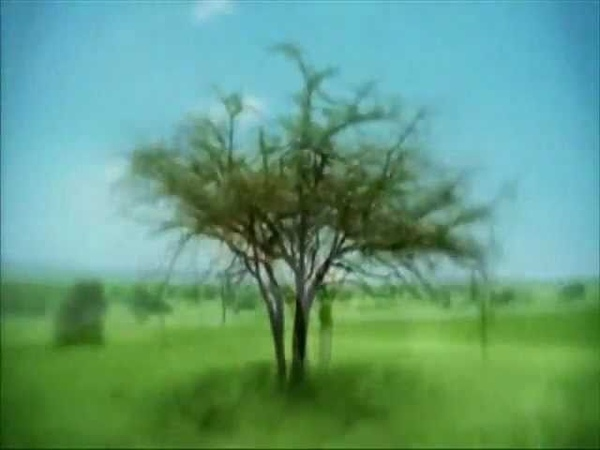 DJ Shadow feat. Roots Manuva (or vice versa) - G.D.M.F.S.O.B.