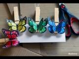 Учим цвета - бабочки на прищепках