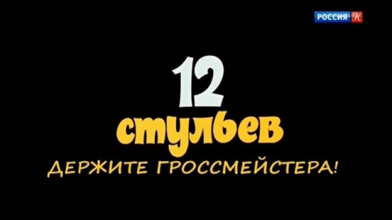 12 стульев. Держите гроссмейстера! 2018, Россия, док. фильм