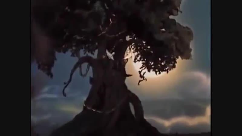 У лукоморья дуб зеленый...