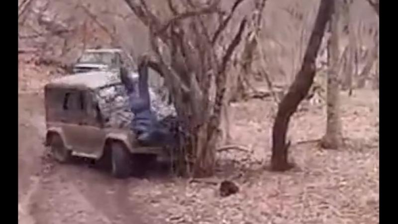 УАЗ ушатали в дерево. Люди вместе с багажником сверху вылетели.