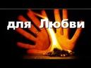 ❤️ Как Притянуть ❤️ Любовь Магические ✨ Свойства Растений ❤️ Совет от Андрея Дуйко