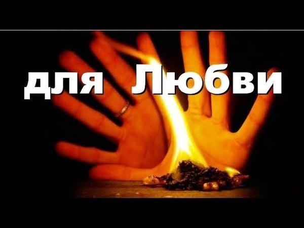 ❤️ Как Притянуть ❤️ Любовь? Магические ✨ Свойства Растений ❤️ Совет от Андрея Дуйко