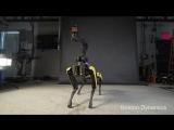 Робот Boston Dynamics научился танцевать