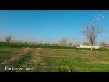 На фермах Джисрин в Восточной аль-Гуте после освобождения Сирийской Арабской армией