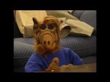 Alf Quote Season 4 Episode 22_На диету