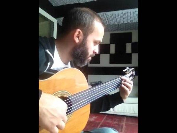 Cenk erdogan Fretless guitar