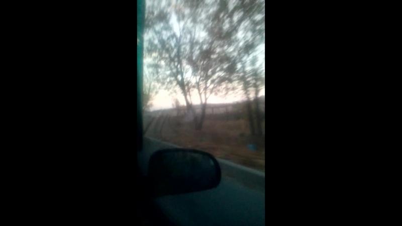 Красавец Таганрог