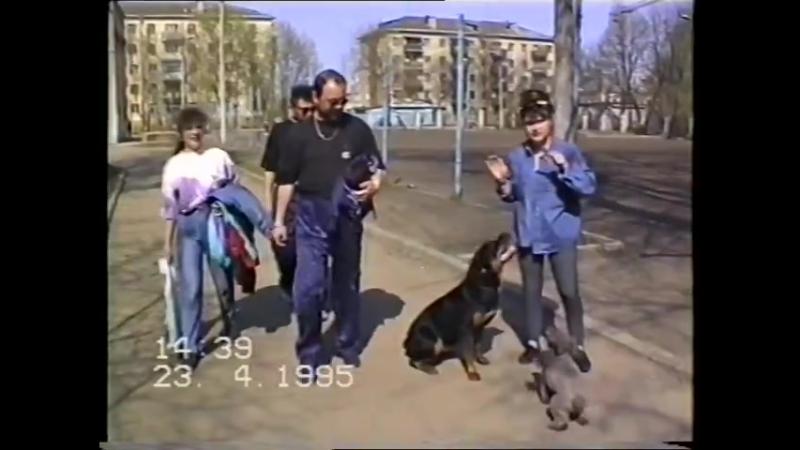 23.04.1995
