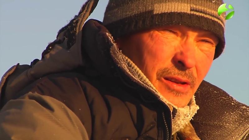 Зимняя промысловая рыбалка на Севере загар рыбы