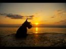 Сочи райская земля