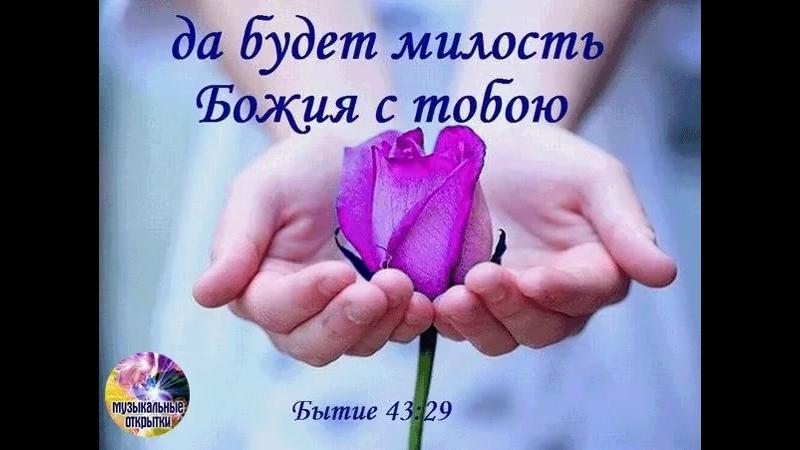 Doc137343663_472404856.mp4