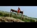 Ishq Hi Hai Rab - Full Song _ Dil Bole Hadippa _ Shahid Kapoor _ Rani Mukerji _ Sonu _ Shreya ( 720 X 1280 ).mp4