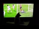 Котик Альф смотрит футбол