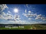 Strig catre Tine ...o cantare a sufletului care vrea sa se apropie mai mult de Dumnezeu