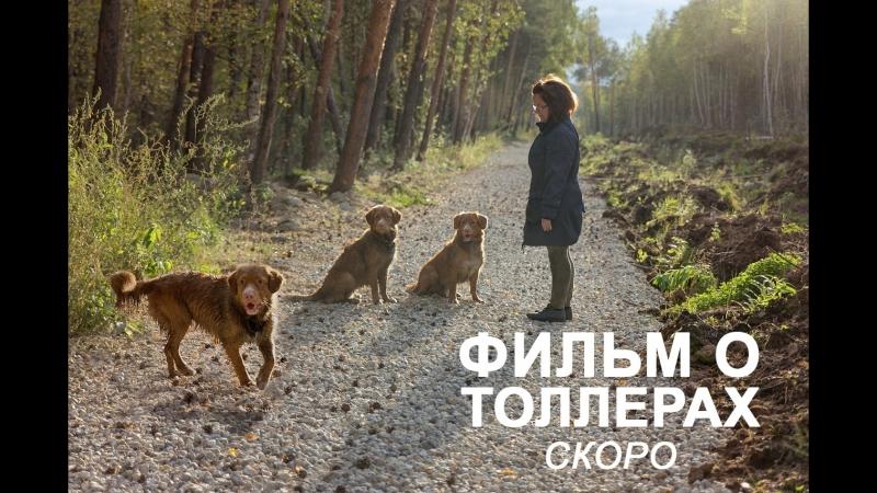 Анонс фильма о толлерах. Екатеринбург 2018