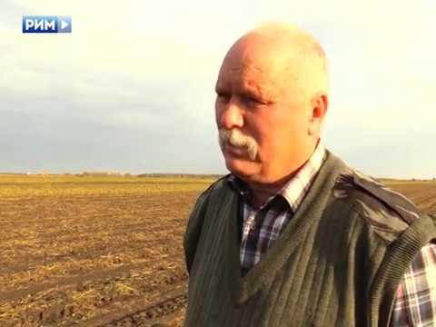 Совет директоров Каменска обсуждает виды на урожай. Панорама 21 сентября 2018