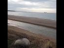 Пляж Любимовка смыло