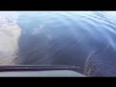 Игорь Тимонов самодельный электромотор для лодки