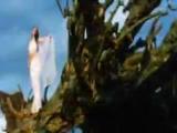Desert Rose by Sting featuring Aishwarya Rai