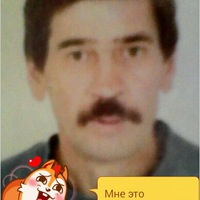Анкета Александр Гашников