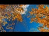 Осенний вальс. Леонид Семаков