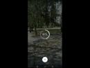 Видео на 360 в Facebook part 2