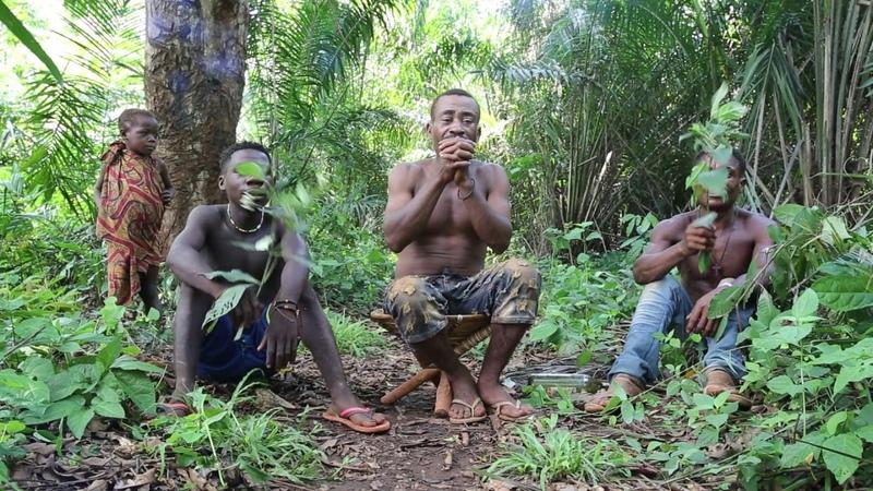 Aka Pygmies Song