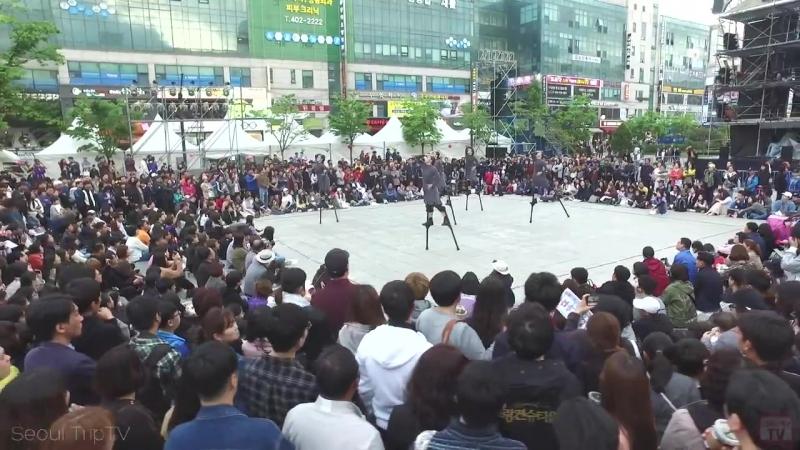 Южная Корея. Ансан. Арт стрит фестиваль. (1544)
