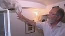 Hornissen-Nest im Haus Dieses Rentner-Paar aus Bonn reagiert super-cool