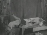 xxxsekta.ru - Оригинал классического порно 1910 года
