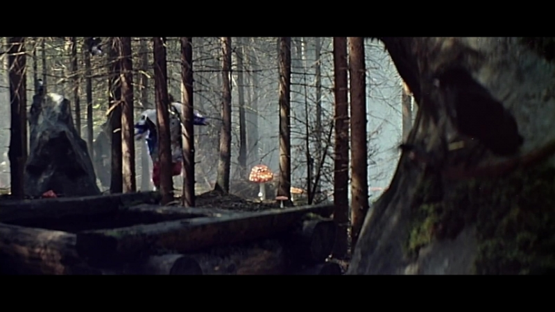 «Варвара-краса, длинная коса» (1969) - сказка, реж. Александр Роу